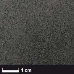 PROCARBON - Karbon Elyaf Tozu 100-400 micron